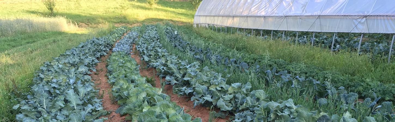 BPREA: Devenez acteur du monde agricole